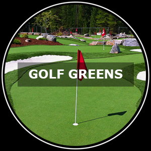 Putting and Gold Green turf