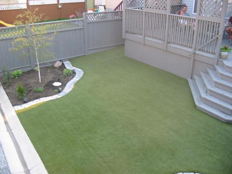 kitts backyard