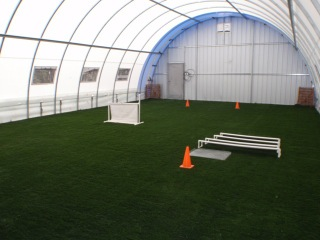 Commercial Pet Training Facility